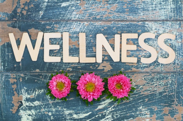 Wellness written with wooden letters on rustic surface and pink daisy flowers
